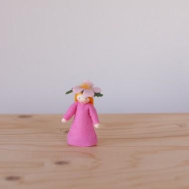 Sweet briar fairy
