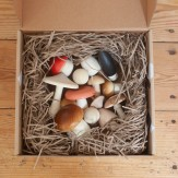 Champignons dans une boite
