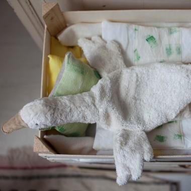 Petite oie